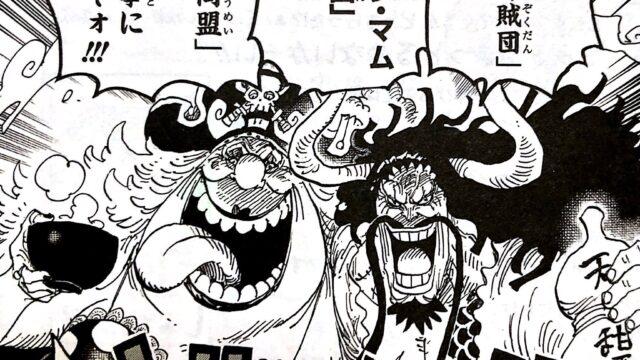 ビッグマム海賊団と百獣海賊団の海賊同盟
