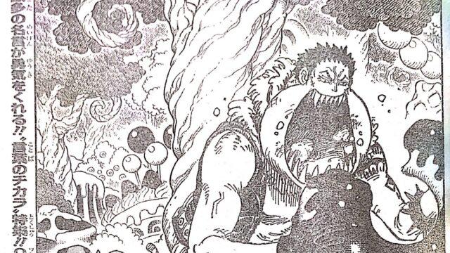 ワンピース1005話の扉絵
